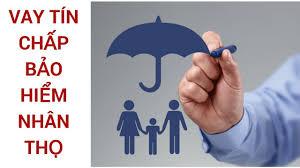 Thủ tục vay tiêu dùng tin chấp theo hợp đồng bảo hiểm.